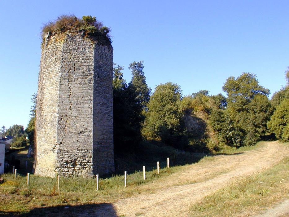 Ruines du château de La Chèze: Vue générale depuis le nord-est, le donjon