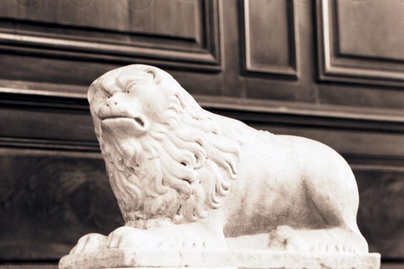 statue : lion
