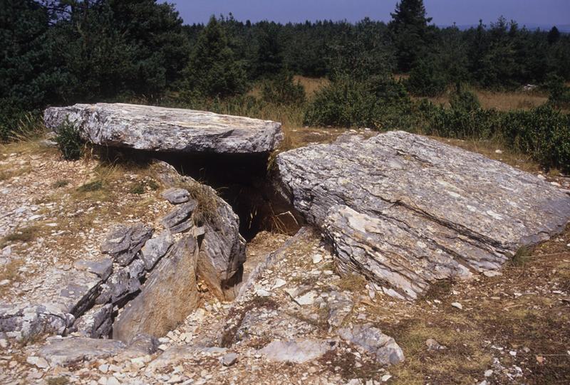 ensemble mégalithique de la Cham;dolmen de la Cham