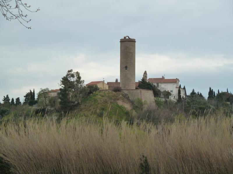 tour de Château-Roussillon