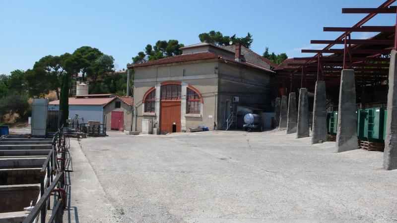Distillerie coopérative