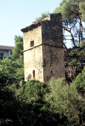 Tour d'Aygosi, pigeonnier