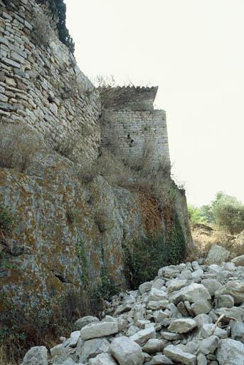 Ensemble fortifié dit restes du vieux château et de l'enceinte