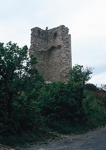 château du Mont d'Or (ancien), tour du Mont d'Or ou château de Saint-Martin