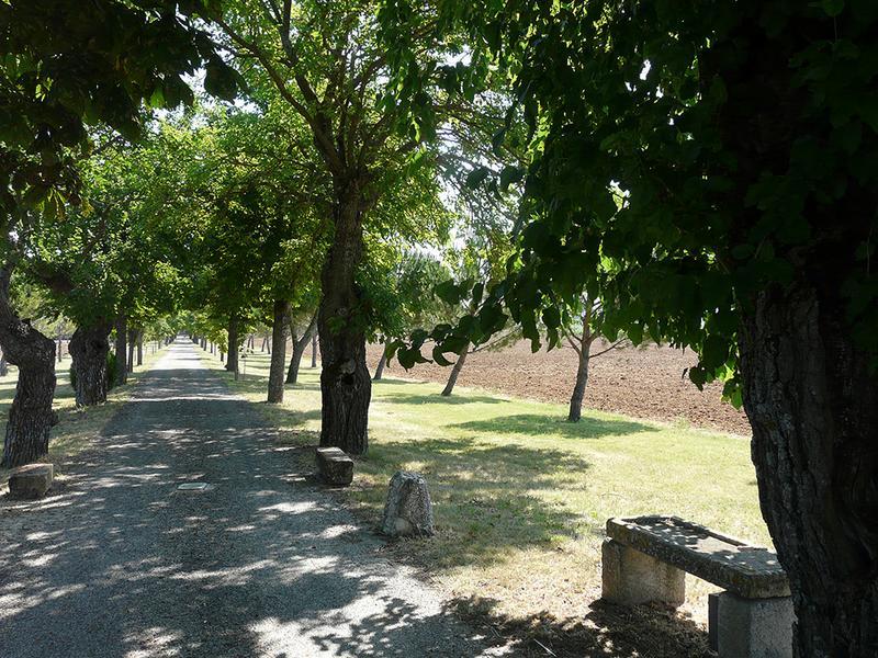 Château de Sauvan et parc; jardin