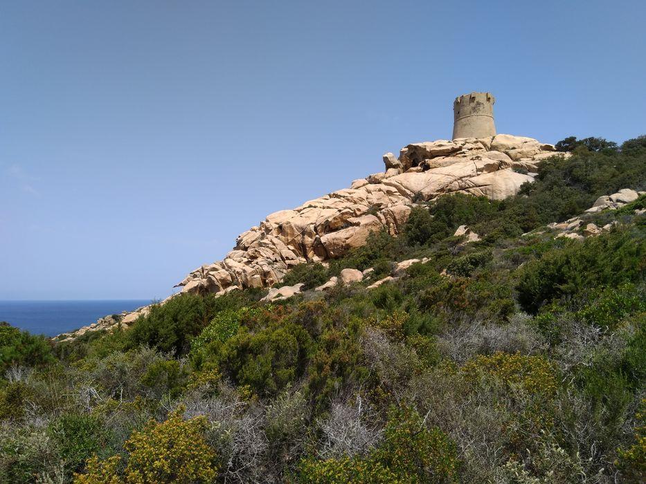 Tour de Senetosa: Vue générale de la tour dans son environnent