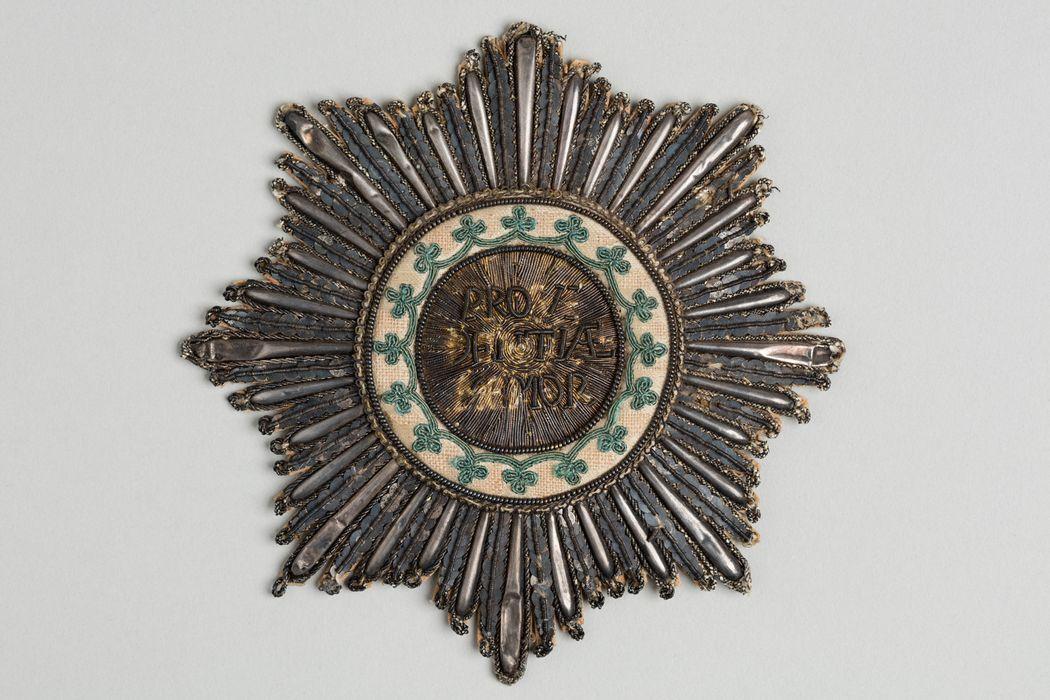 Décorations du prince de Talleyrand (plaque) : Ordre de la Couronne de Saxe