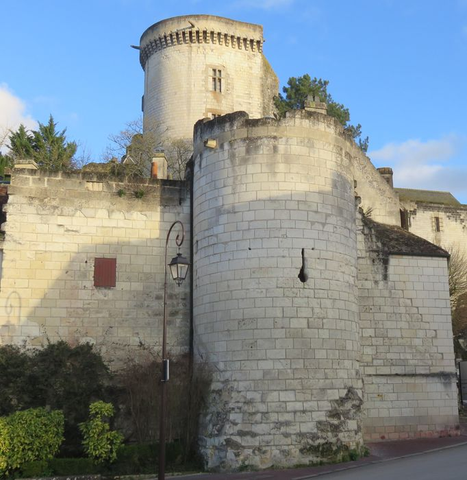 Vestiges de la porte Poitevine et la tour d'enceinte, ou Maillet: Elévation ouest, vue générale