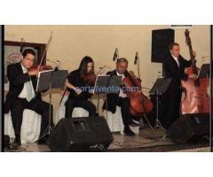 viiolines de ensueños musica instrumental