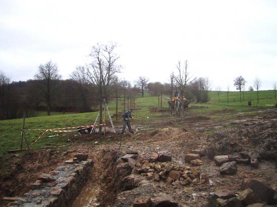 18 janvier 2008, transplantation de tilleuls près du manoir.