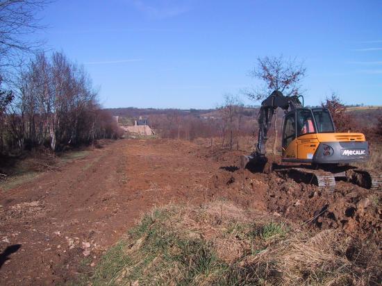8 février 2008, de jeunes chênes sont replantés sur le talus.