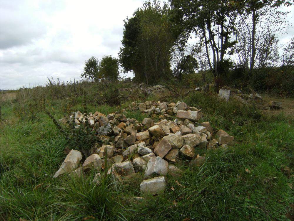 Jeudi 30 septembre 2010, les tas des pierres vus du Nord, en partie dissimulés par les mauvaises herbes.