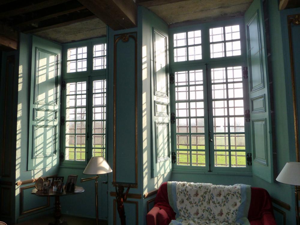 6 mars 2011, les grilles vues du salon.