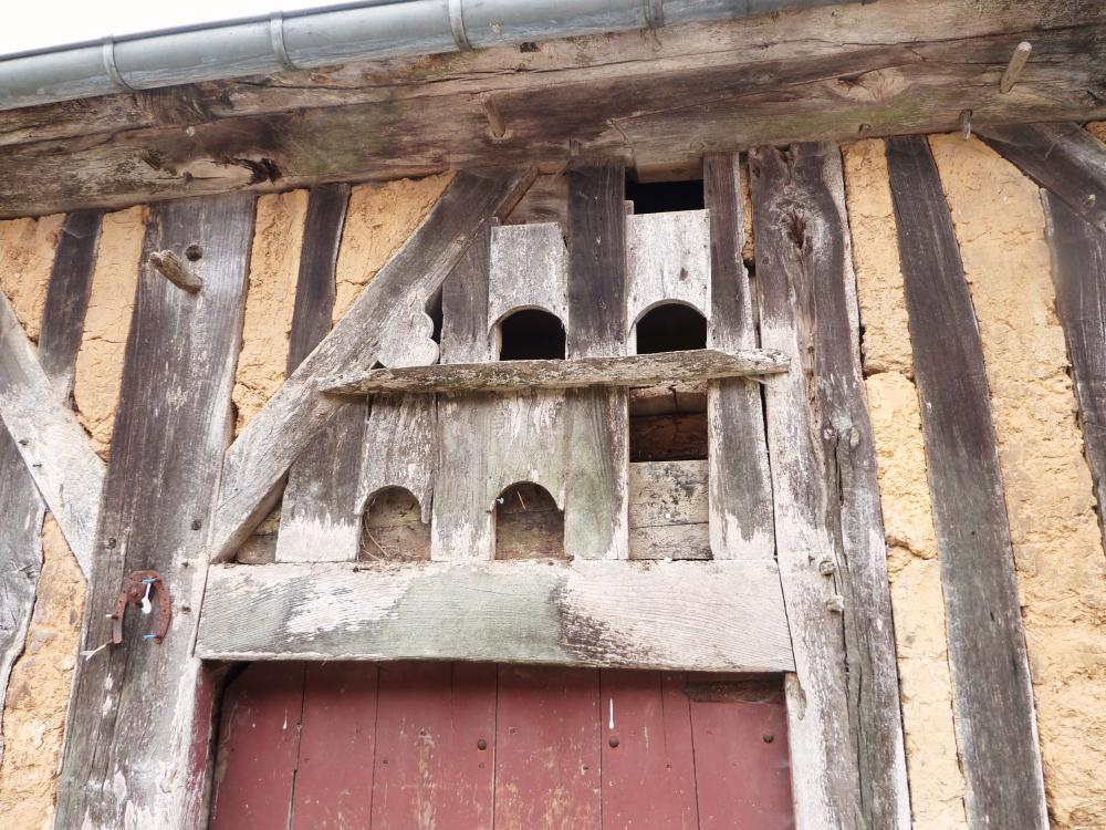28 juin 2011, anciens nichoirs à la Pronière.