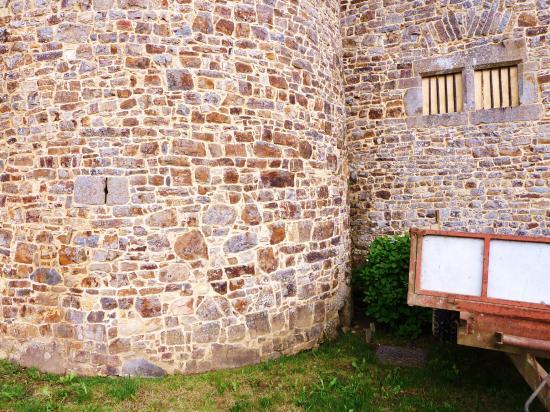 11 mai 2012, les pierres les plus fréquentes dans les murs de la Chaslerie.