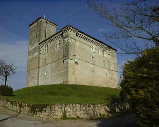 Le château de Plieux.