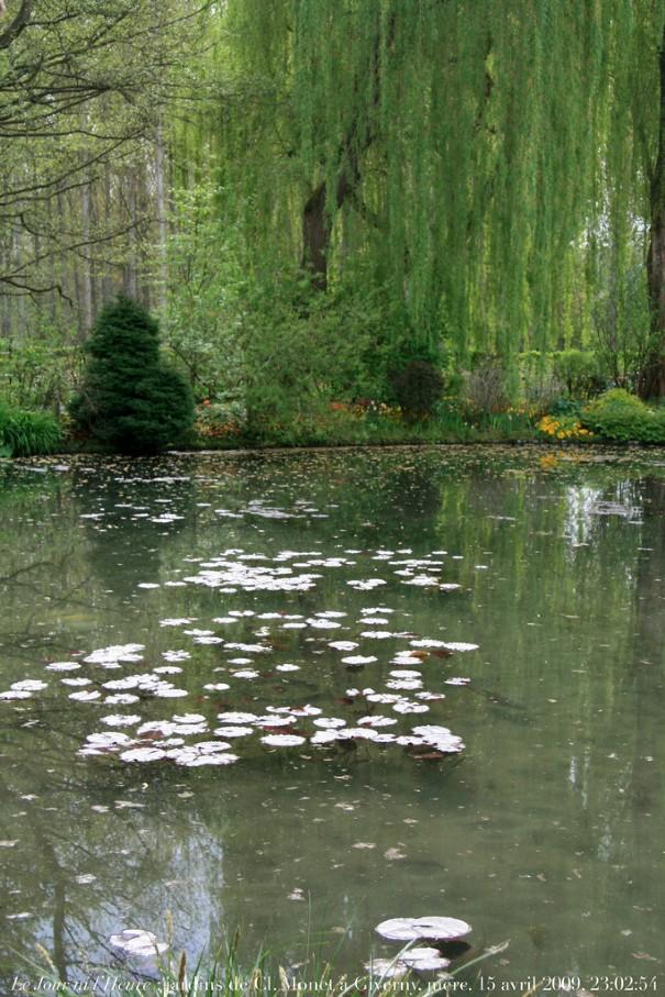 Photo prise par Renaud CAMUS dans les jardins de Claude MONET à Giverny.