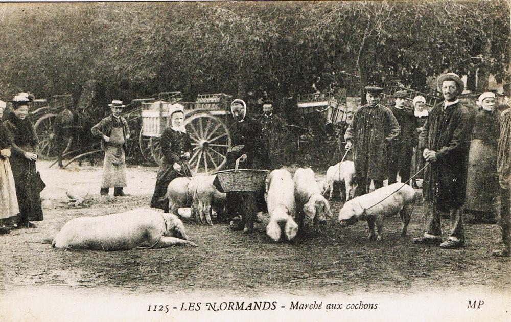Marché aux cochons.