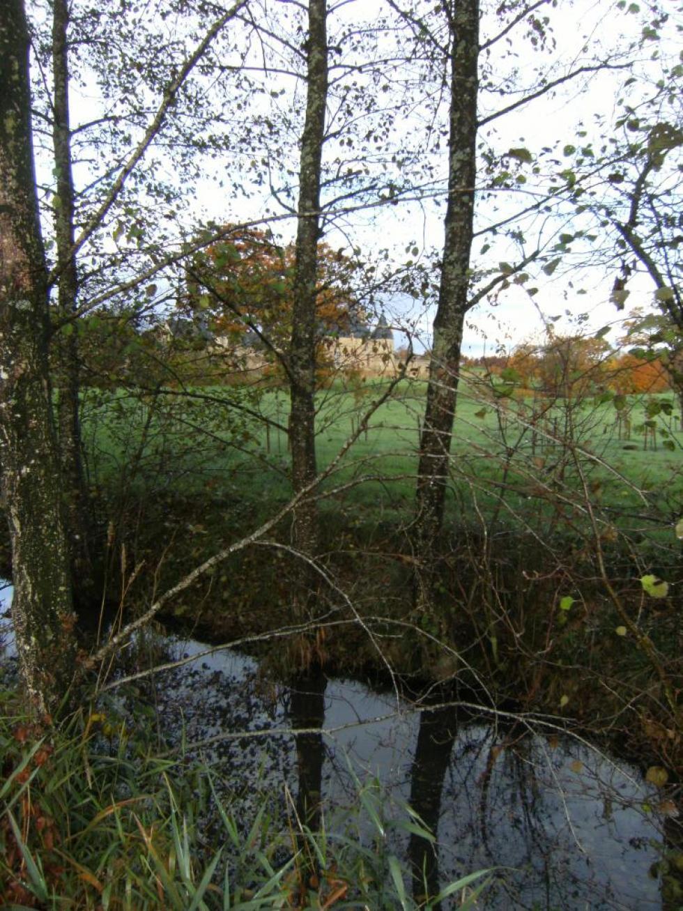 """7 novembre 2011, le canal d'alimentation vu du """"champ de Mauduit""""."""