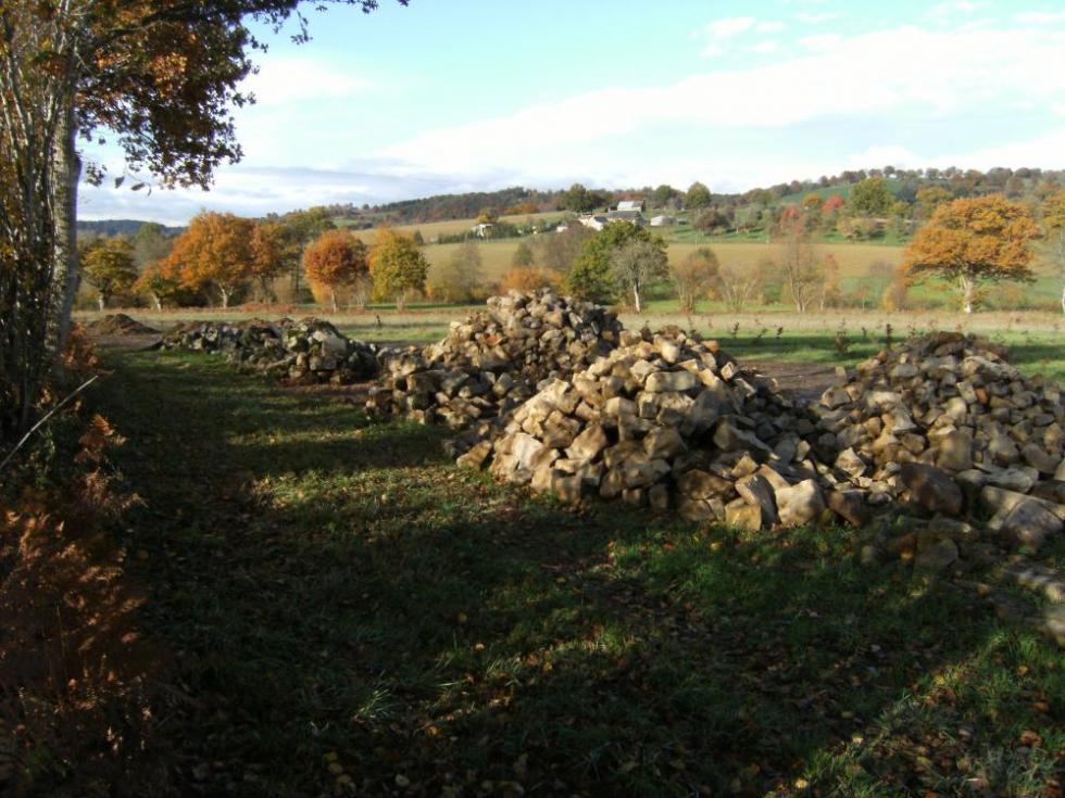 7 novembre 2010, aperçu des pierres triées.