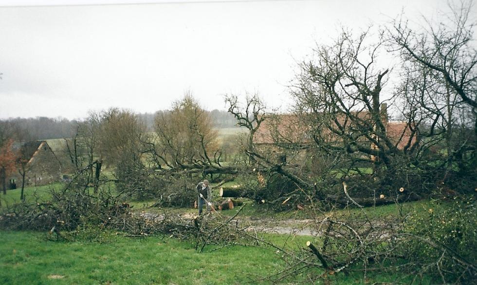 Tempête de 1999: paysage dévasté