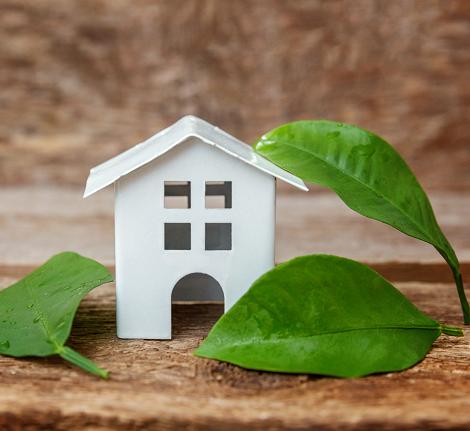 Nettoyage de votre maison : conseils et astuces