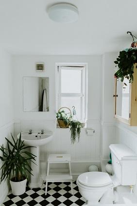 nettoyer naturellement wc MERCI+