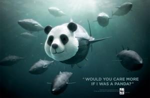 wwf tuna panda