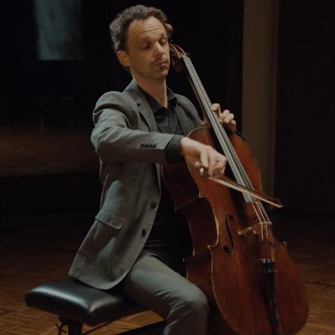 klara cello famousgrey