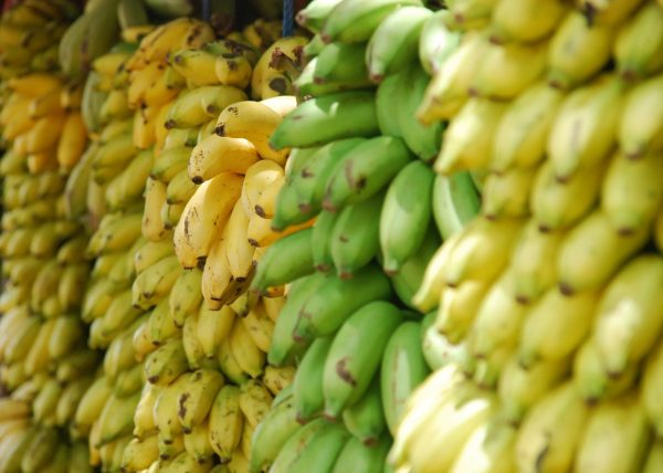 banana lotte-lohr-766-unsplash