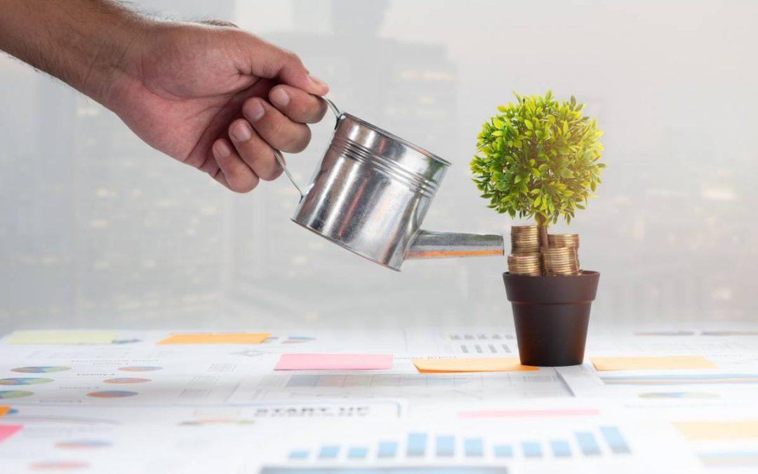 Comment avoir l'image d'une entreprise plus verte ?