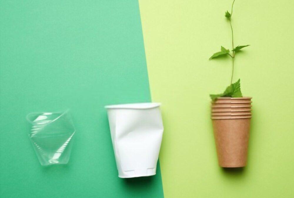 Gobelet en carton: l'alternative écologique pour remplacer le plastique