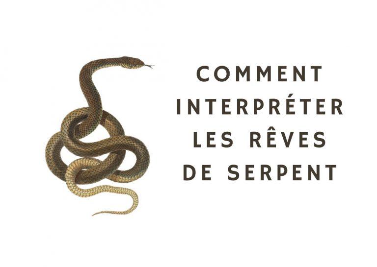 reves de serpent
