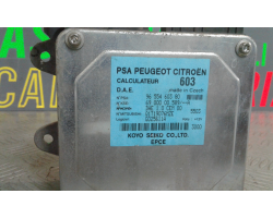 Centralina Servosterzo PEUGEOT 1007 1° Serie