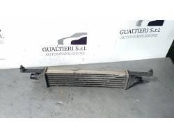 Scambiatore FIAT Grande Punto 1° Serie