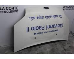 Cofano Anteriore FORD Transit Connect 1° Serie