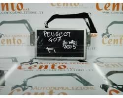 Display PEUGEOT 407 Berlina