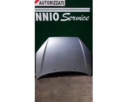 Cofano Anteriore FORD Focus S. Wagon 2° Serie