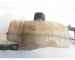 Vaschetta liquido radiatore RENAULT Clio Serie (04>08)