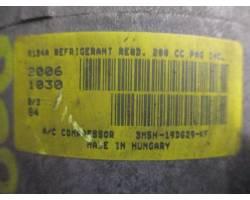 Compressore A/C FORD C - Max Serie (03>07)