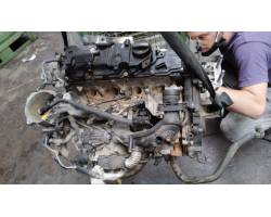 Motore Semicompleto FORD Focus Berlina 5° Serie