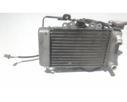 124060 RADIATORE ACQUA HONDA SH 150 150 Benzina (2007) RICAMBI USATI