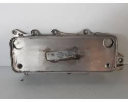 Scambiatore MERCEDES ML W164 3° Serie