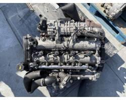 F1ce3481l TESTA COMPLETA IVECO Daily 5° Serie 3000 Diesel F1ce3481l (2017) RICAMBI USATI