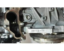 Motore Semicompleto FORD Focus Berlina 4° Serie