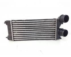 Intercooler PEUGEOT 308 Serie (07>14)