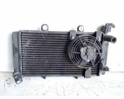 RADIATORE ACQUA Aprilia Pegaso 650cc (97>01) Benzina (2001) RICAMBI USATI