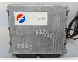 67R011002 CENTRALINA GPL PEUGEOT 206 Plus Berlina 1124 Bifuel/Gas 44,10 (2012) RICAMBI USATI