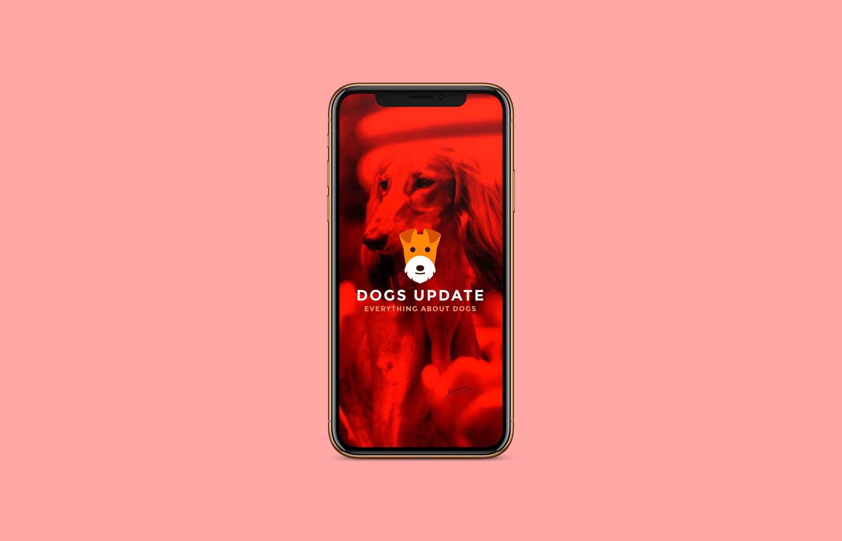 Diseño App Dogs Update