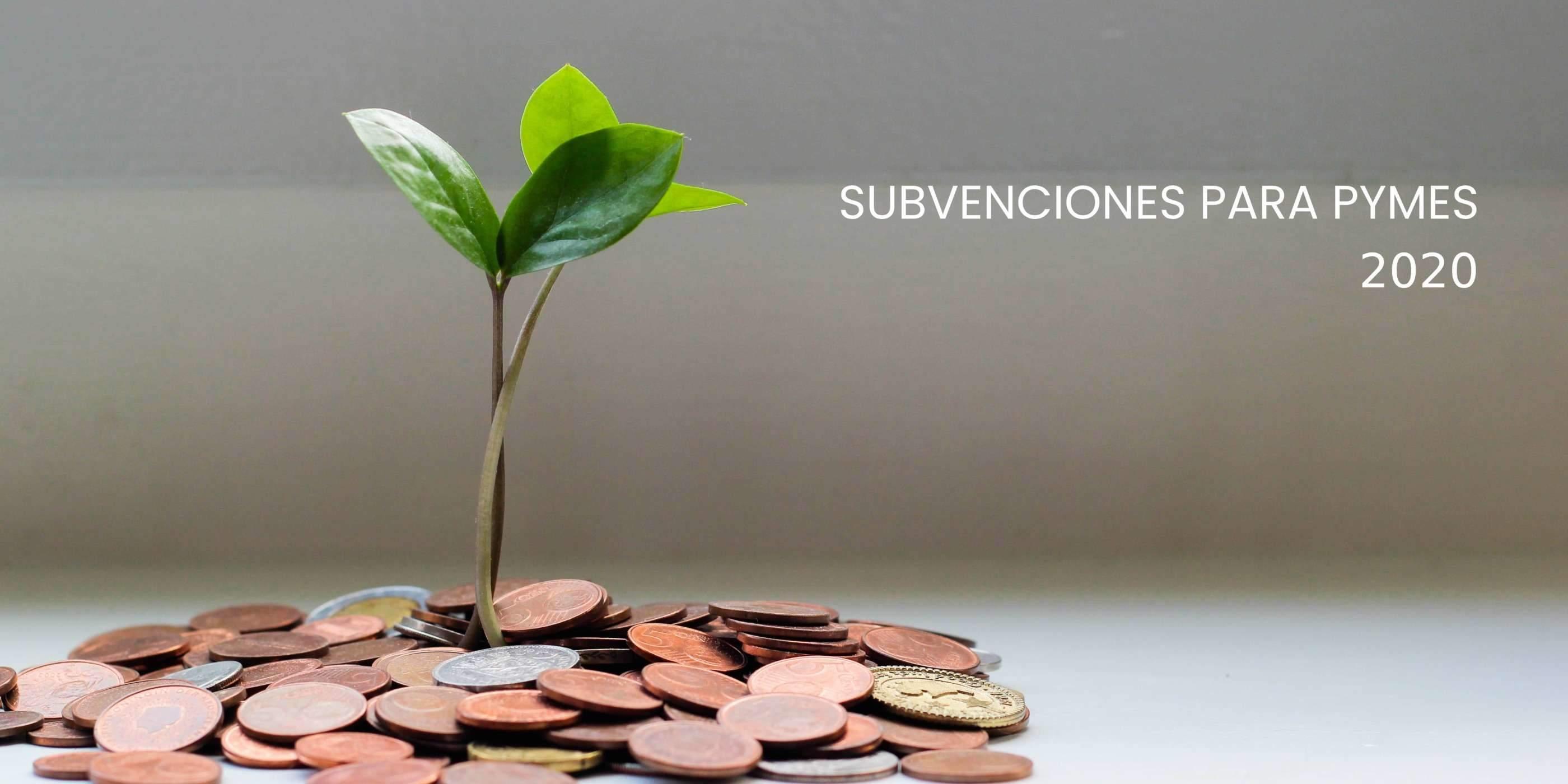 Subvenciones para reactivar la actividad comercial para PYMES por la Junta de Andalucía.
